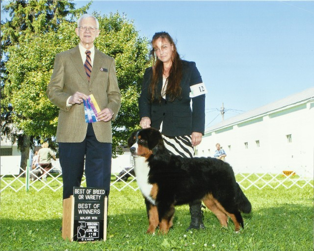 Best of Breed Major @ 9 months - Sept 2014